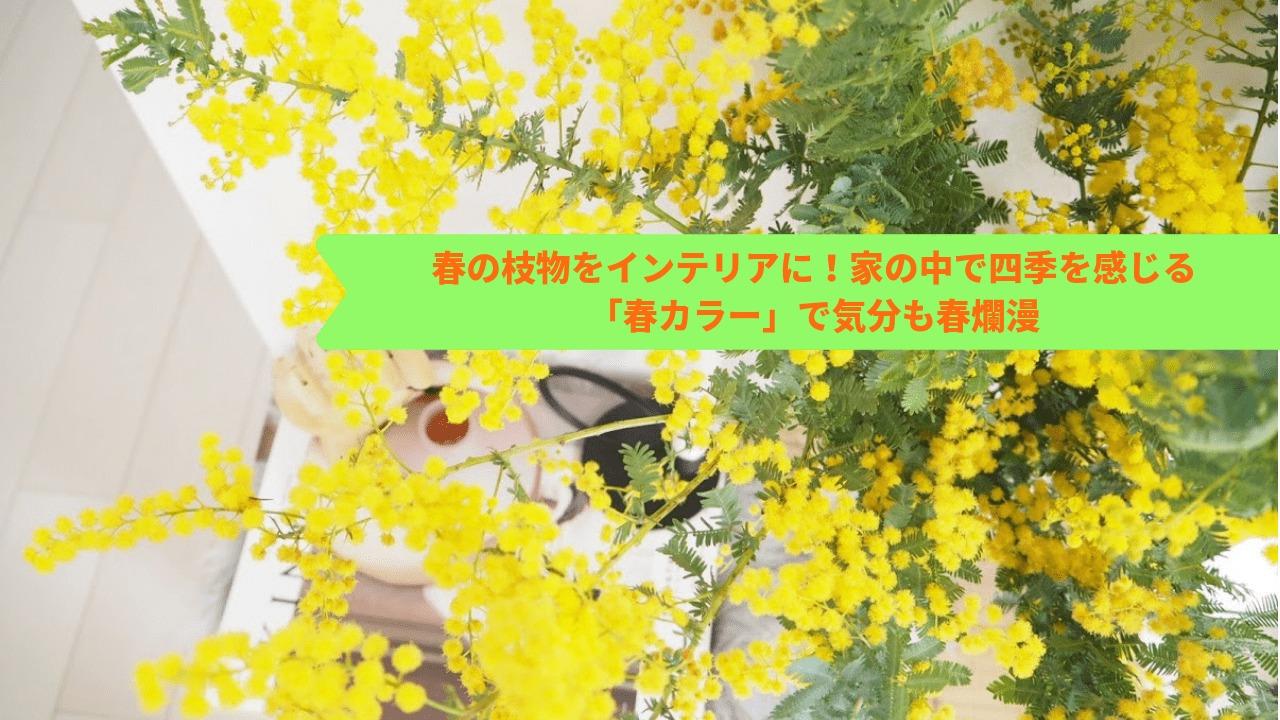 春の枝ものをインテリアに!家の中で四季を感じる「春カラー」で気分も春爛漫